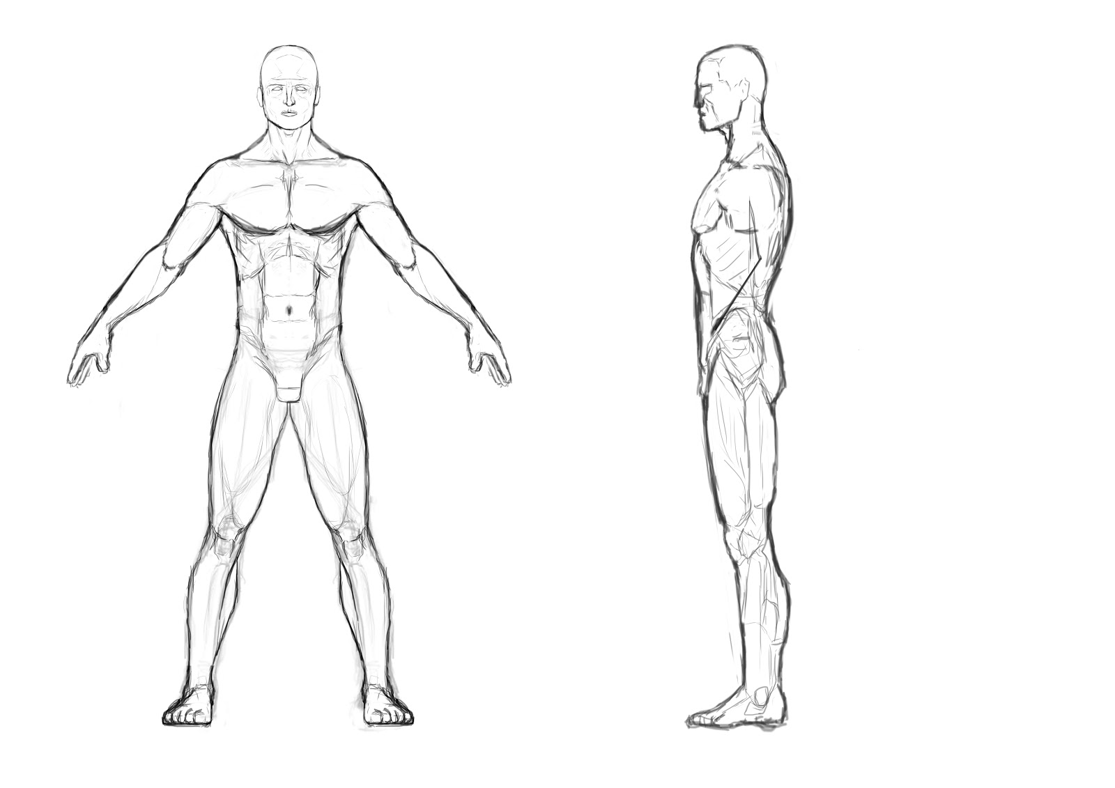 1600x1131 Male Body Template Male Body Outline Front And Back I Then Used