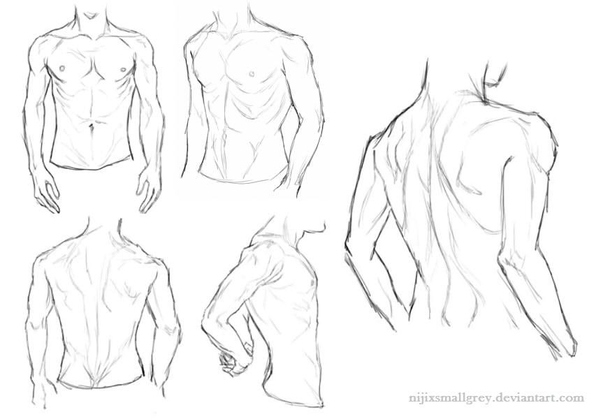 850x600 Male Anatomy Study By Nijicx
