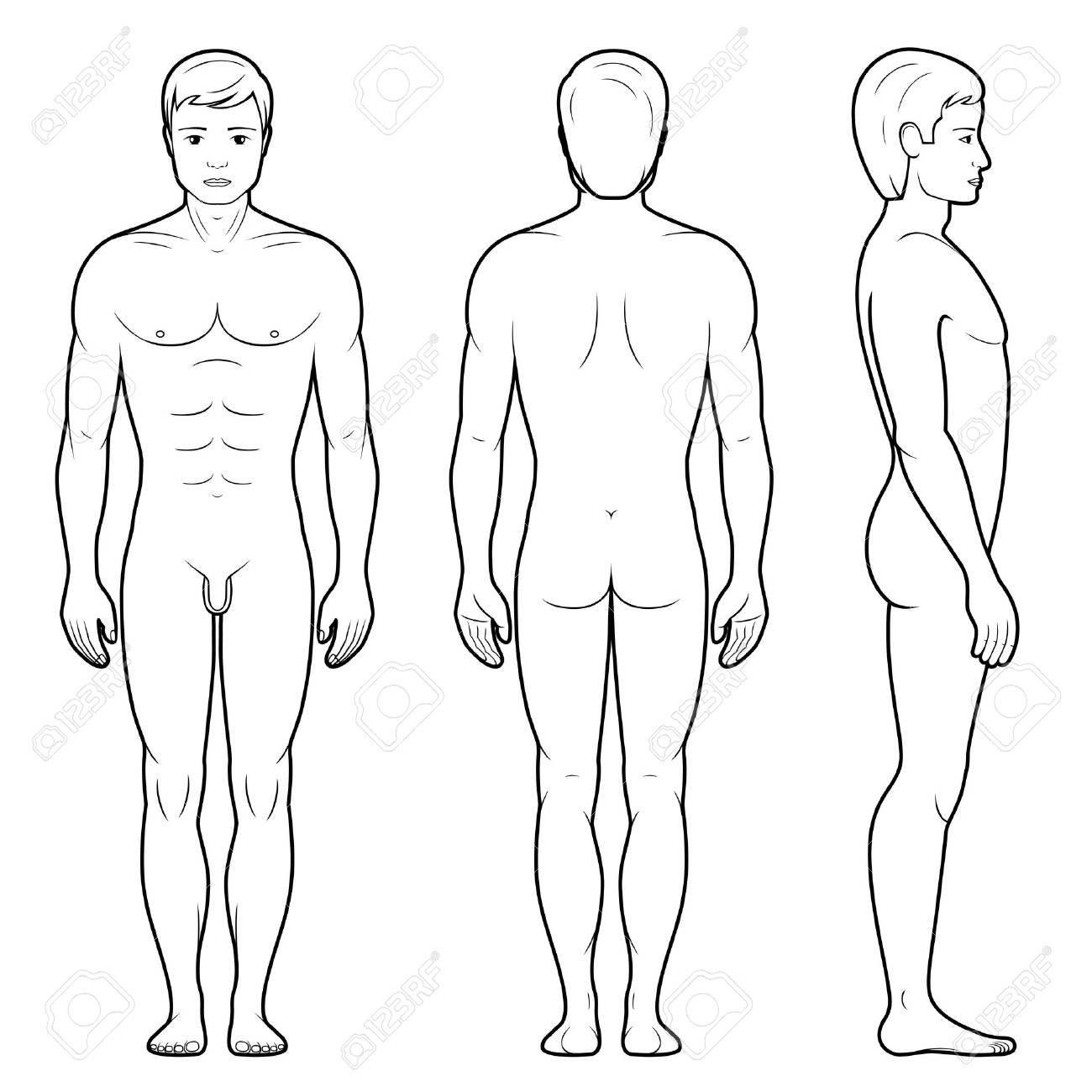 1300x1300 Vector Illustration Of Male Figure