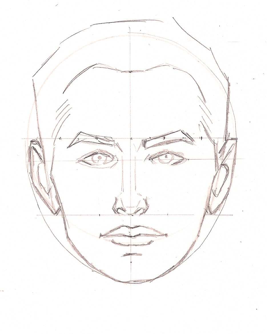 935x1170 Face Proportions Drawing Tutorials