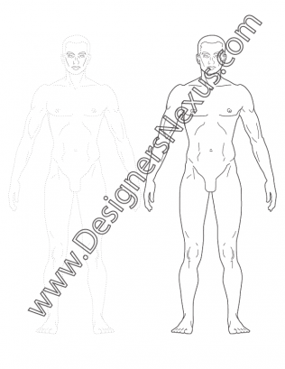 316x409 Front View Male Figure Template V3 Realistic Human Proportions