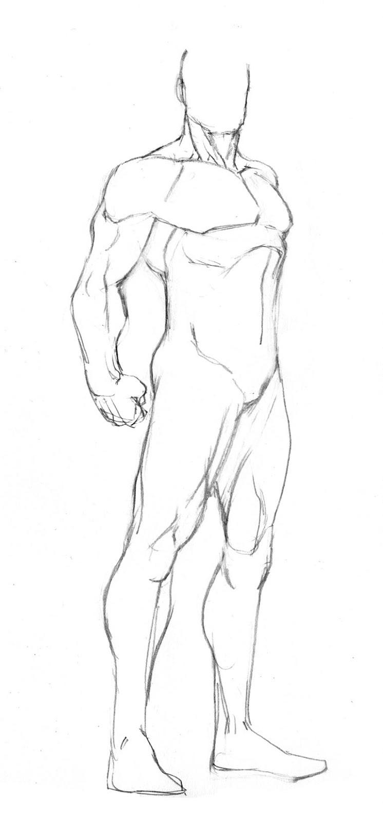 746x1600 More Figure Templates Robert Atkins Art