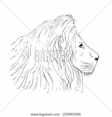 450x470 Lion Head Tattooing Head Tattoo Images, Illustrations, Vectors