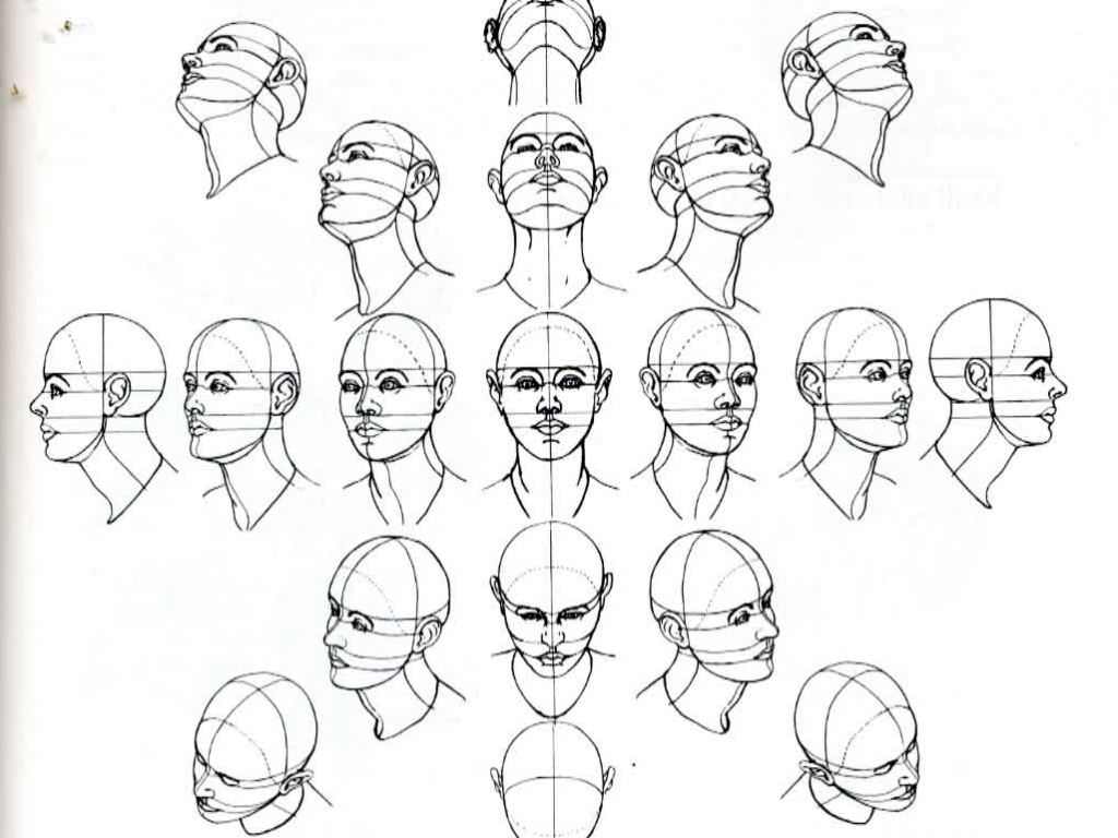 1024x768 Face Looking Up Drawing How To Draw A Head Looking Up And Down