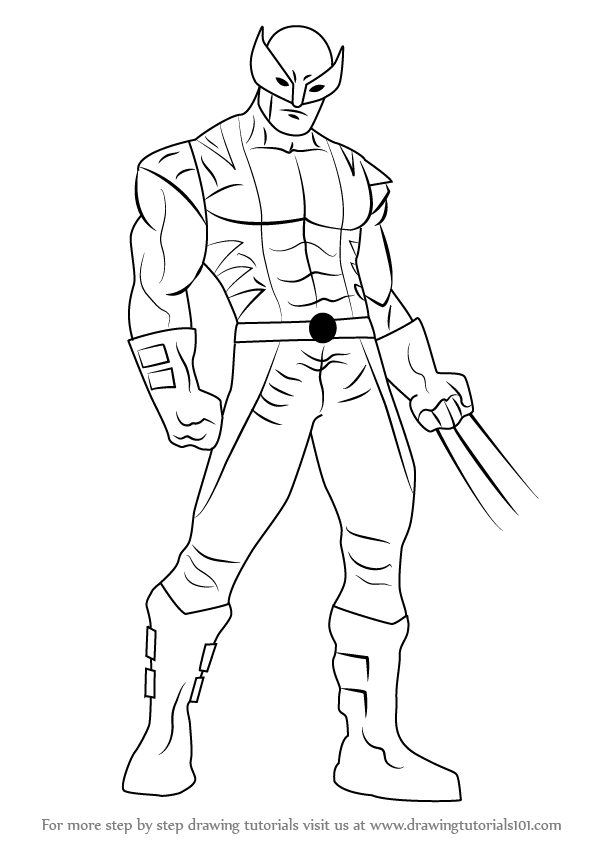 597x844 Learn How To Draw Wolverine From X Men (X Men) Step By Step