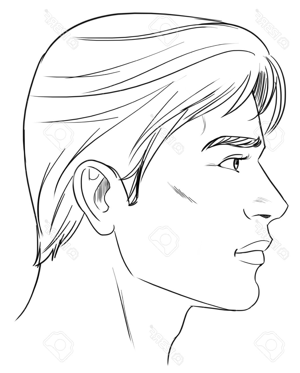 1046x1300 Drawing Face Profile Outline Outline Side Profile Of A Human Male