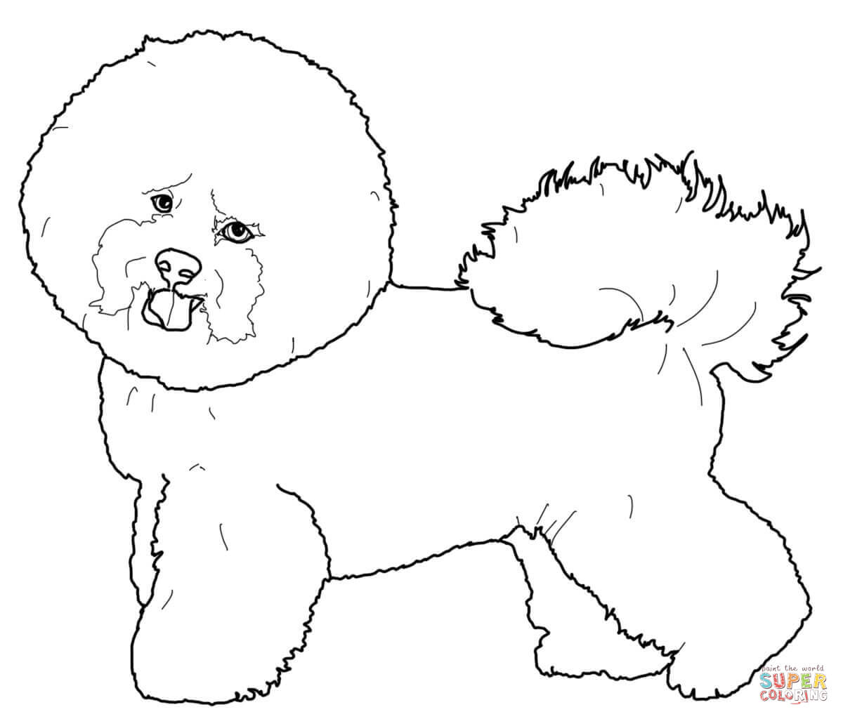 Maltese Dog Drawing At Getdrawings Free For Personal Use