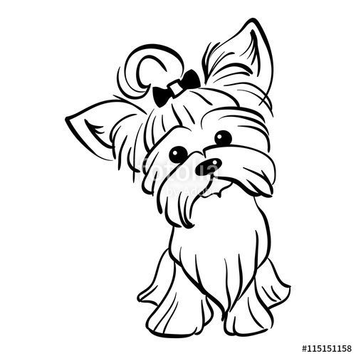 500x500 Sketch Funny Dog Yorkshire Terrier Breed Sitting Hand Drawing