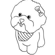 220x220 Maltese Dog Puppy Coloring Pages
