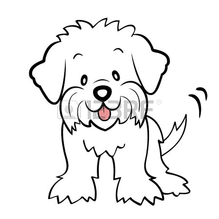 450x450 Puppy Cut Maltese Isolated Royalty Free Cliparts, Vectors,