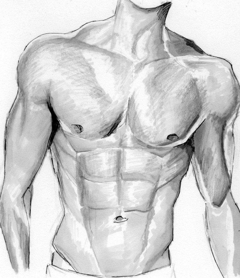 1024x1183 Man Upper Body By Iktoriaodo