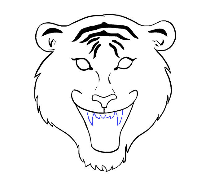 678x600 How To Draw A Tiger Face In A Few Easy Steps Easy Drawing Guides