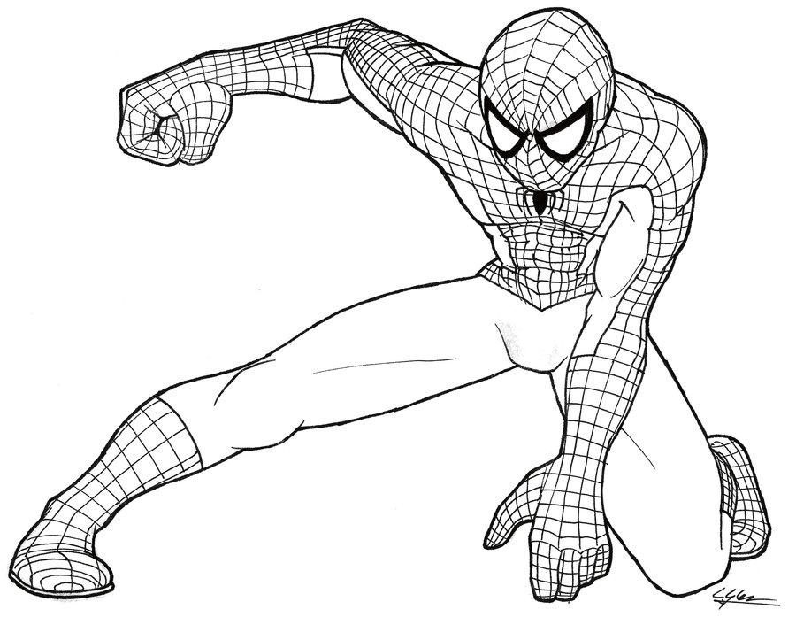 900x697 Spider Man Lines By N0b0d1