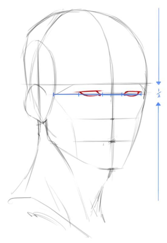 550x800 How To Draw Heads 34 Angle