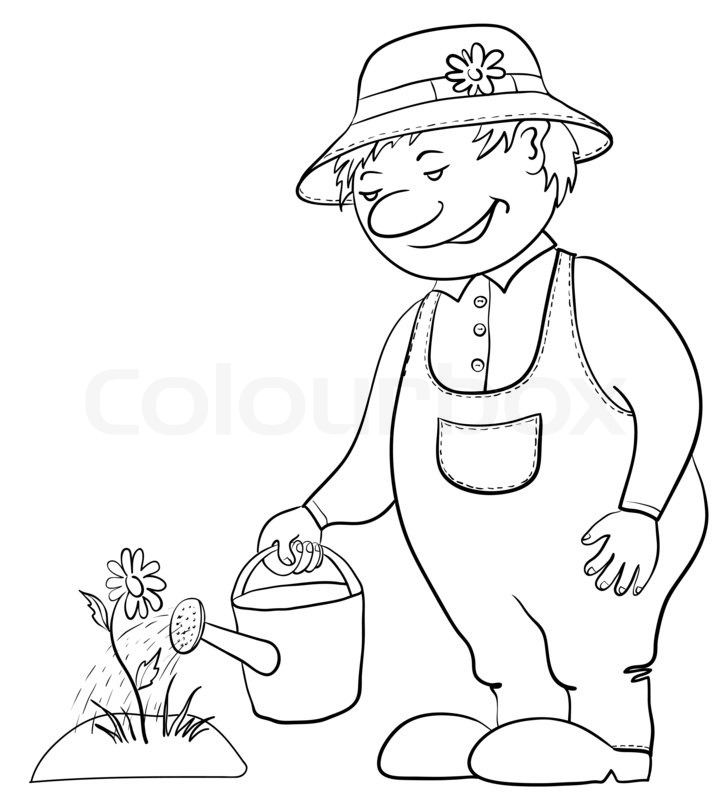 727x800 Man Gardener Waters A Bed With A Flower From A Watering Can