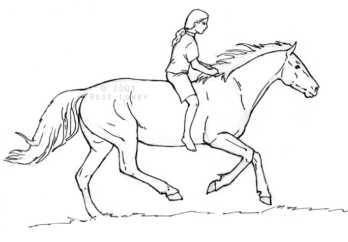 684x476 Person Riding Horse Drawings And Sketches Exam