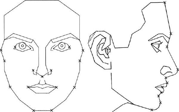 Man Side Face Drawing At Getdrawings
