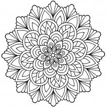 220x220 Mandalas With Flowers Amp Vegetation