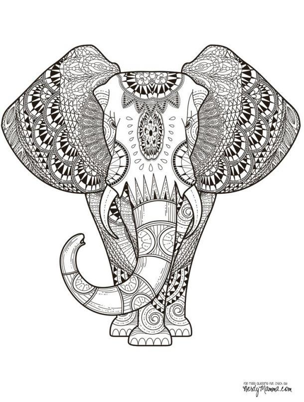 610x805 Mandalas, Animals, And Paisley Patterns Adult Coloring Book