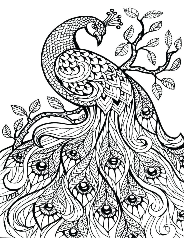 736x952 Printable Mandala Coloring Pages For Adults Mandala Coloring Pages