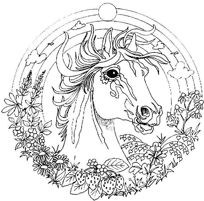 652x644 Animal Mandala Coloring Pages Printable