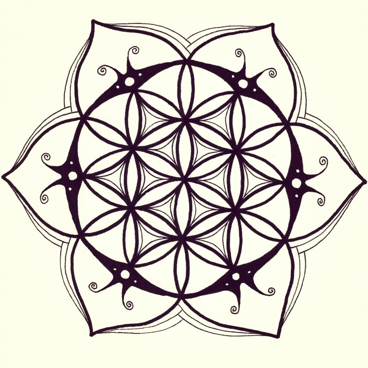739x739 I Made Another Flower Of Lifemandala Drawing