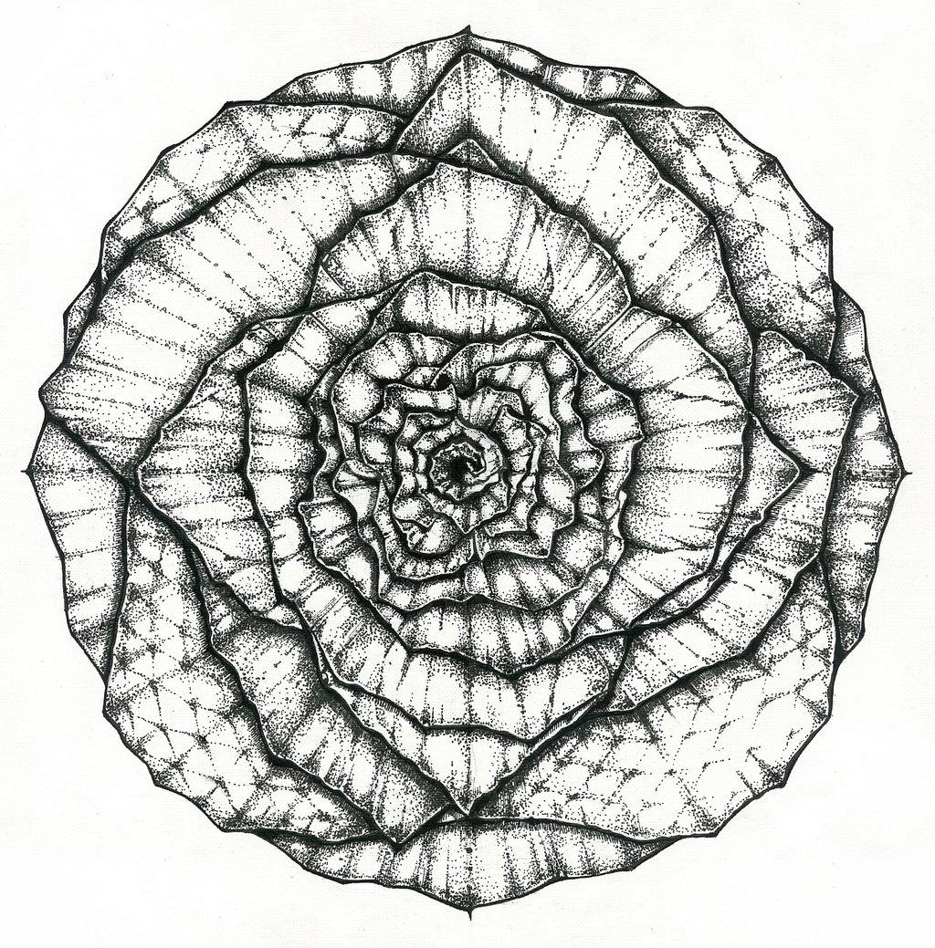 1024x1039 Mandala Flower Byapopova