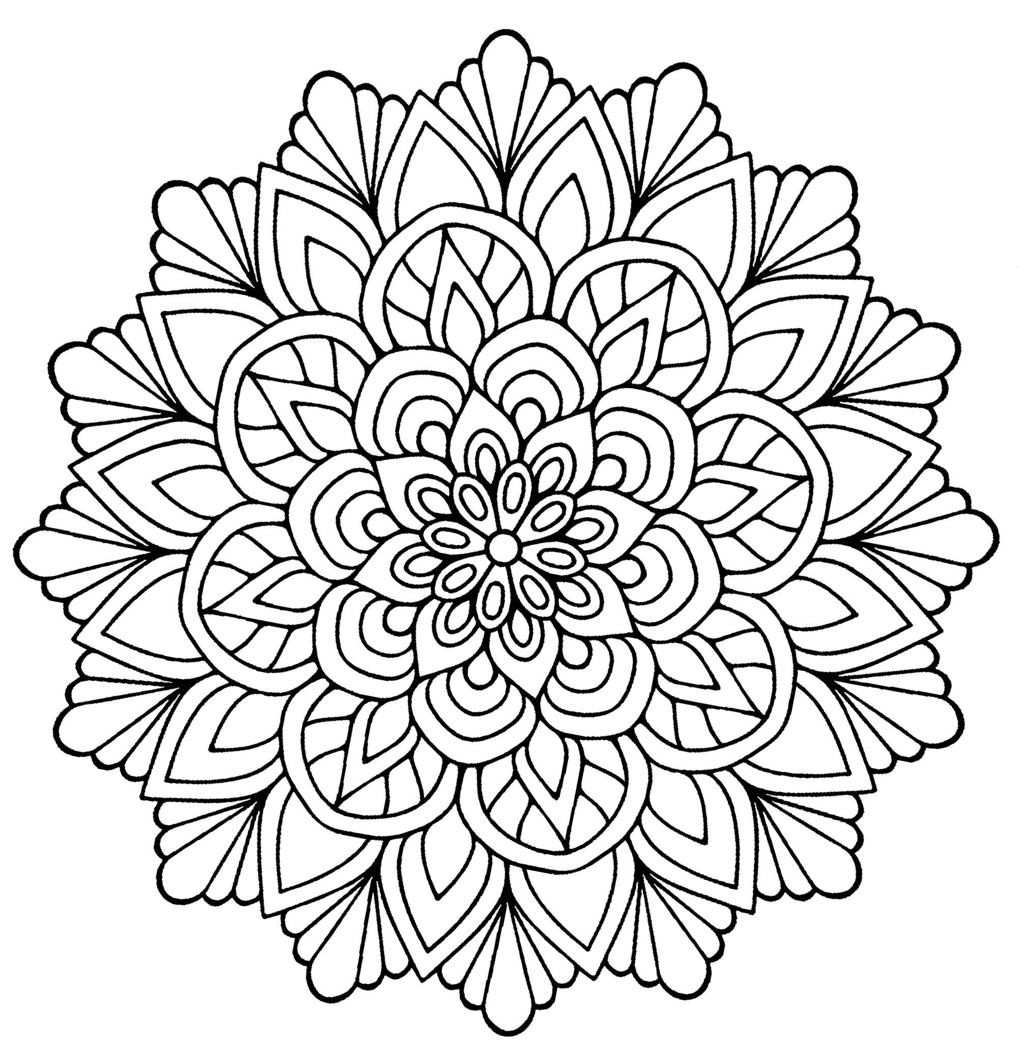 2000x2090 Mandala Flower With Leaves Mandalas
