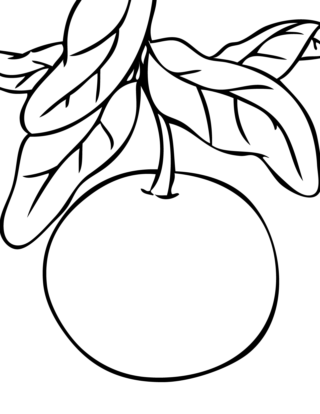 1275x1650 Mandarin Fruit For Coloring Coloring Japanese Fruit