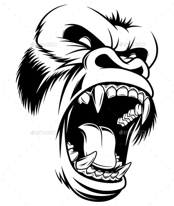 590x700 Fierce Gorilla Head By Andrey1005 Graphicriver