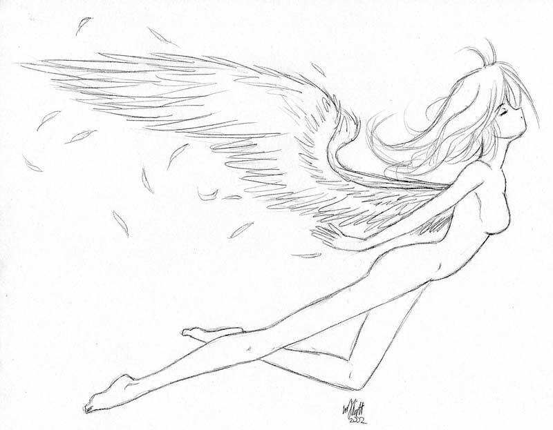 800x623 Flying Angel Thing By Phoenix San