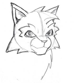 320x350 How To Draw Warrior Cats, Step By Step, Cartoon Animals, Animals