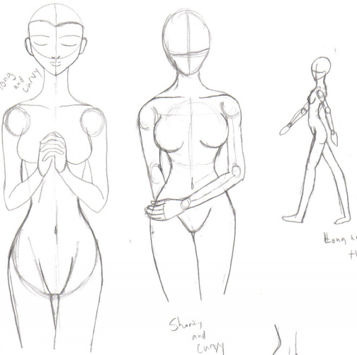 504x500 Drawing The Female Backside Drawing The Form Of The Body Takes
