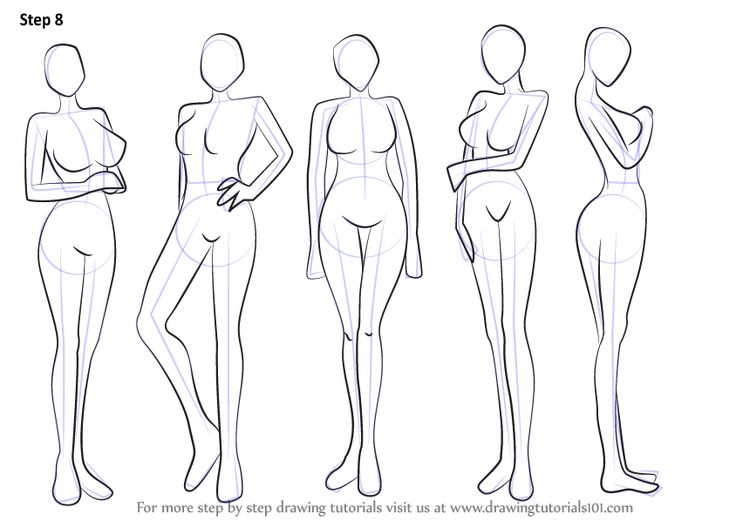 736x521 How To Draw Female Anime Body How To Draw Anime Body With Tutorial