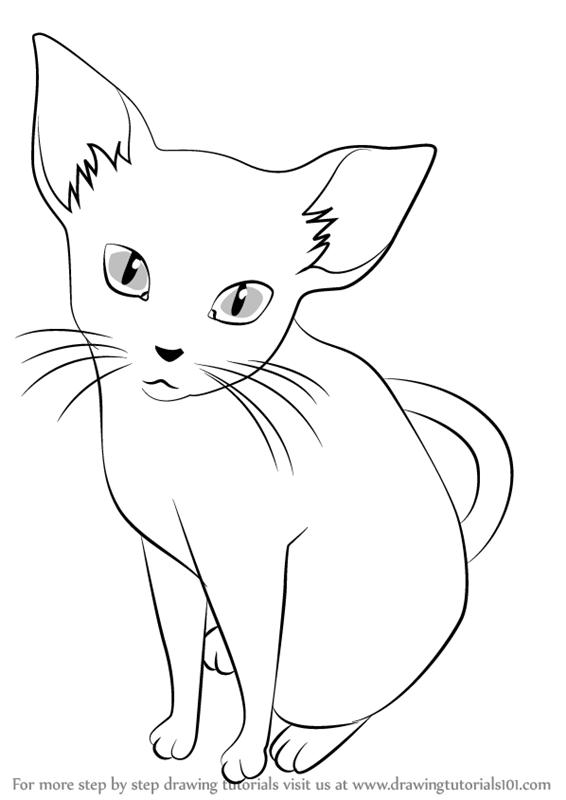 566x800 Learn How To Draw The Cat From Shigatsu Wa Kimi No Uso (Shigatsu