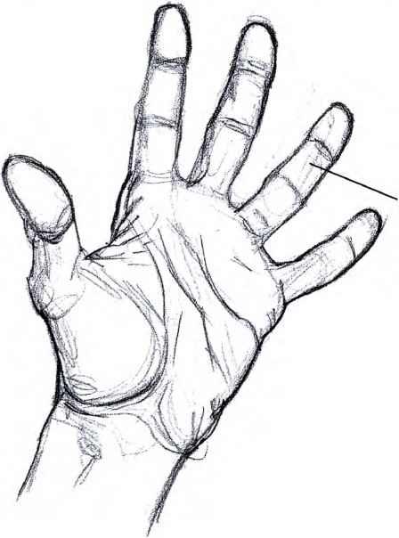 448x604 How To Draw Manga Hand