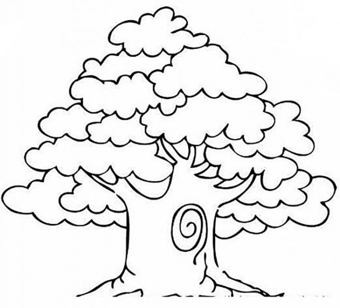 687x622 Coloring Pages Coloring Pages Draw Tree Coloring Pages Draw