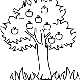 268x268 Mango Tree Coloring Page Kids Drawing And Coloring Pages