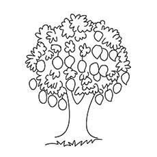 how to draw a mango tree easy