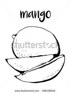 236x311 Original Mango Fruit Giclee Botanical Illustration Mango Fruit