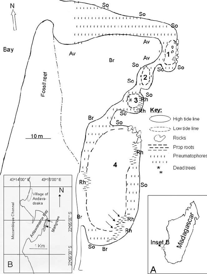 663x877 Map Of Madagascar Region, And The Mangrove Pools, Showing