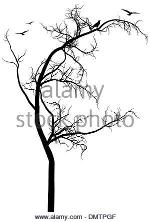 300x445 Black Tree, Vector Stock Vector Art Amp Illustration, Vector Image