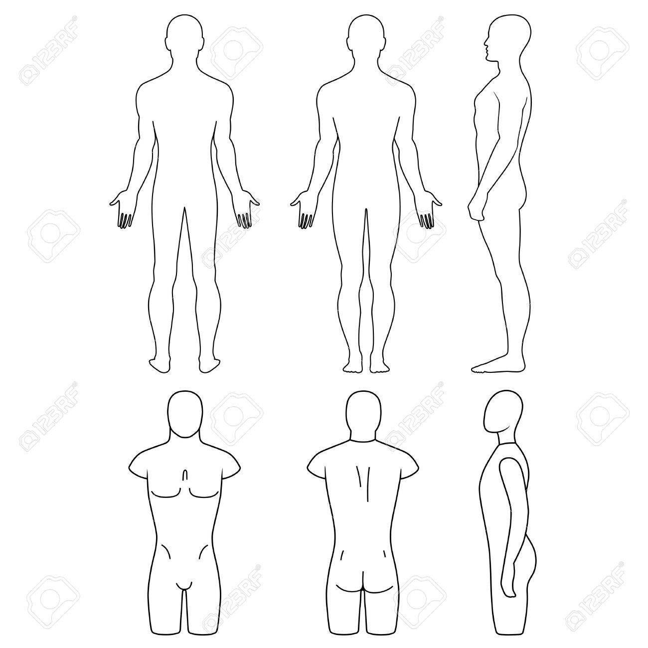 1300x1300 Male Mannequin Outlined Torso (Front, Back, Side View). Vector