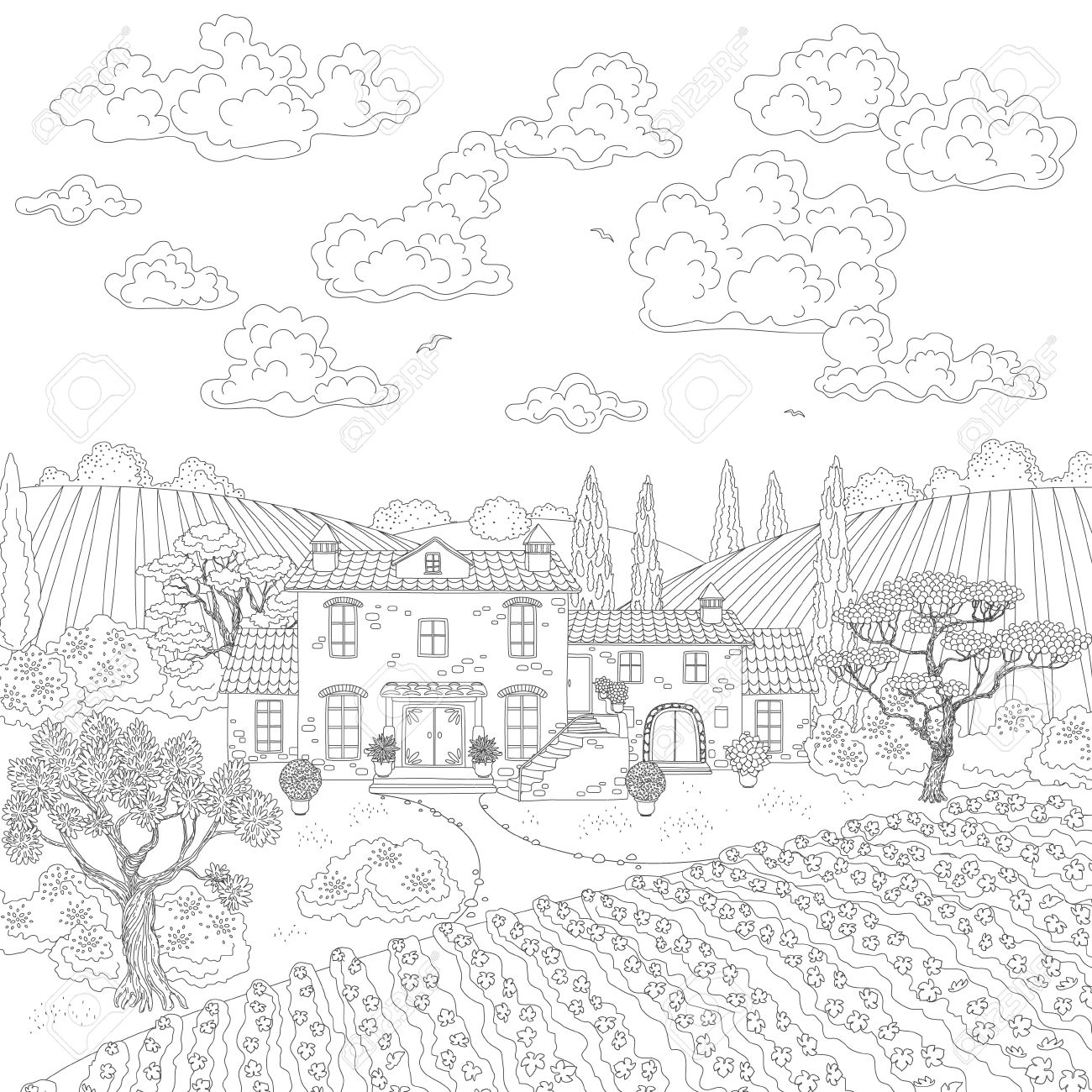 1300x1300 Contoured Summer Landscape With House, Vineyard, Trees And Clouds