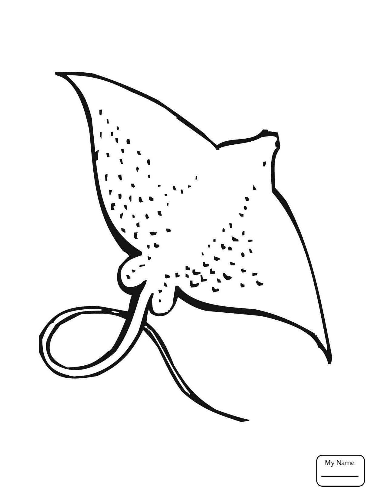 1224x1632 Fish Manta Ray And Scuba Ray Coloring Pages