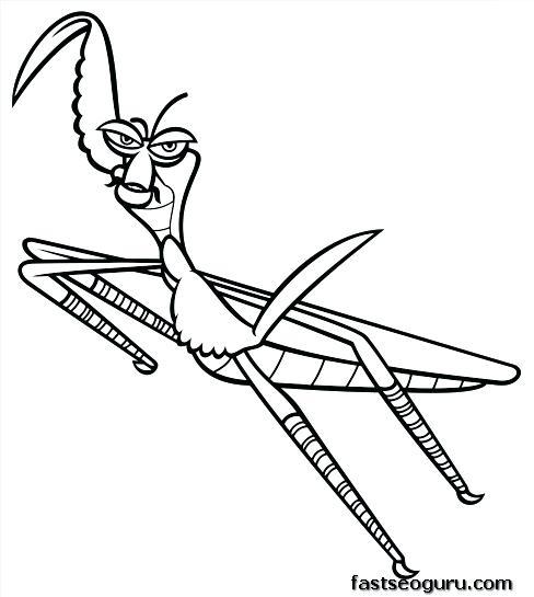 488x545 Praying Mantis Coloring Page Mantis Coloring Pages Praying Mantis