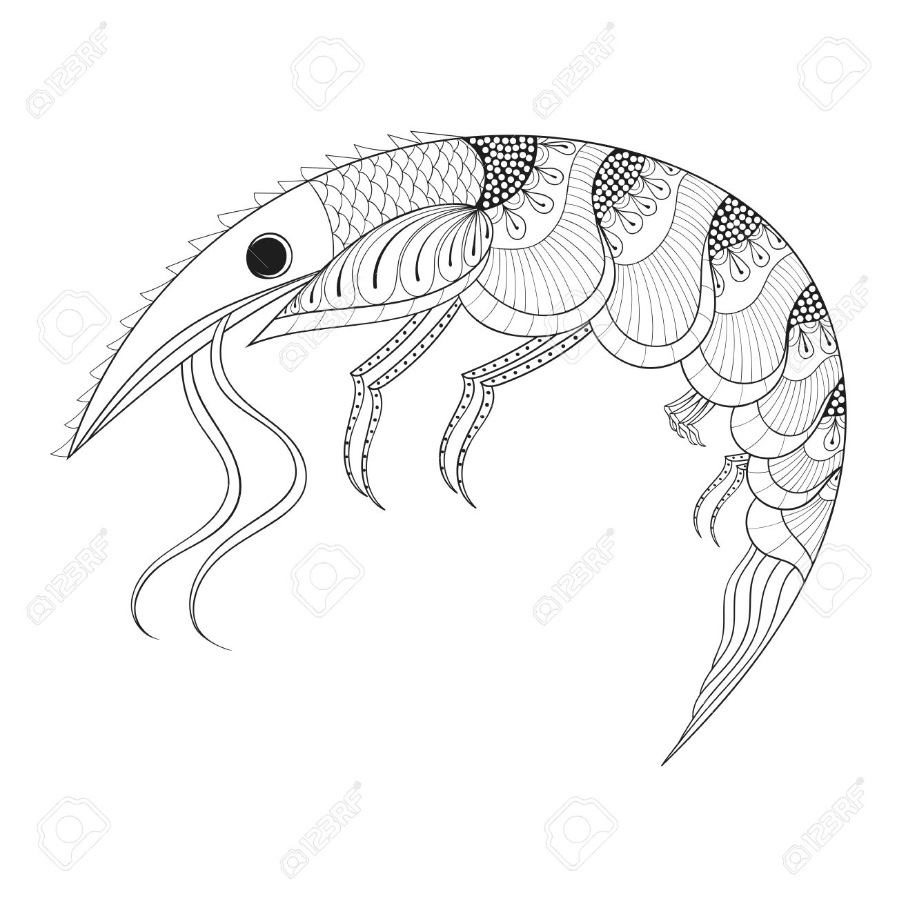 1300x1300 Shrimp Animal Coloring Pages