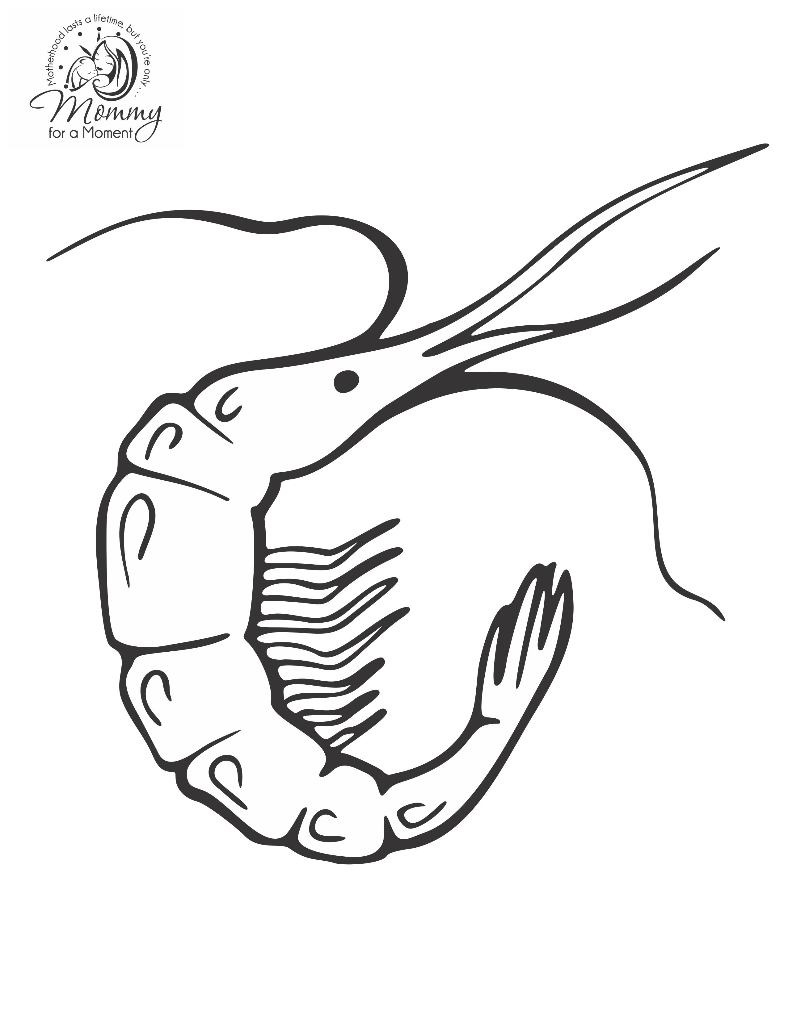 2551x3301 Shrimp Coloring Pages