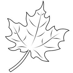 236x236 How To Draw Maple Leaves Easy Leaf Step By Step Drawing Lesson