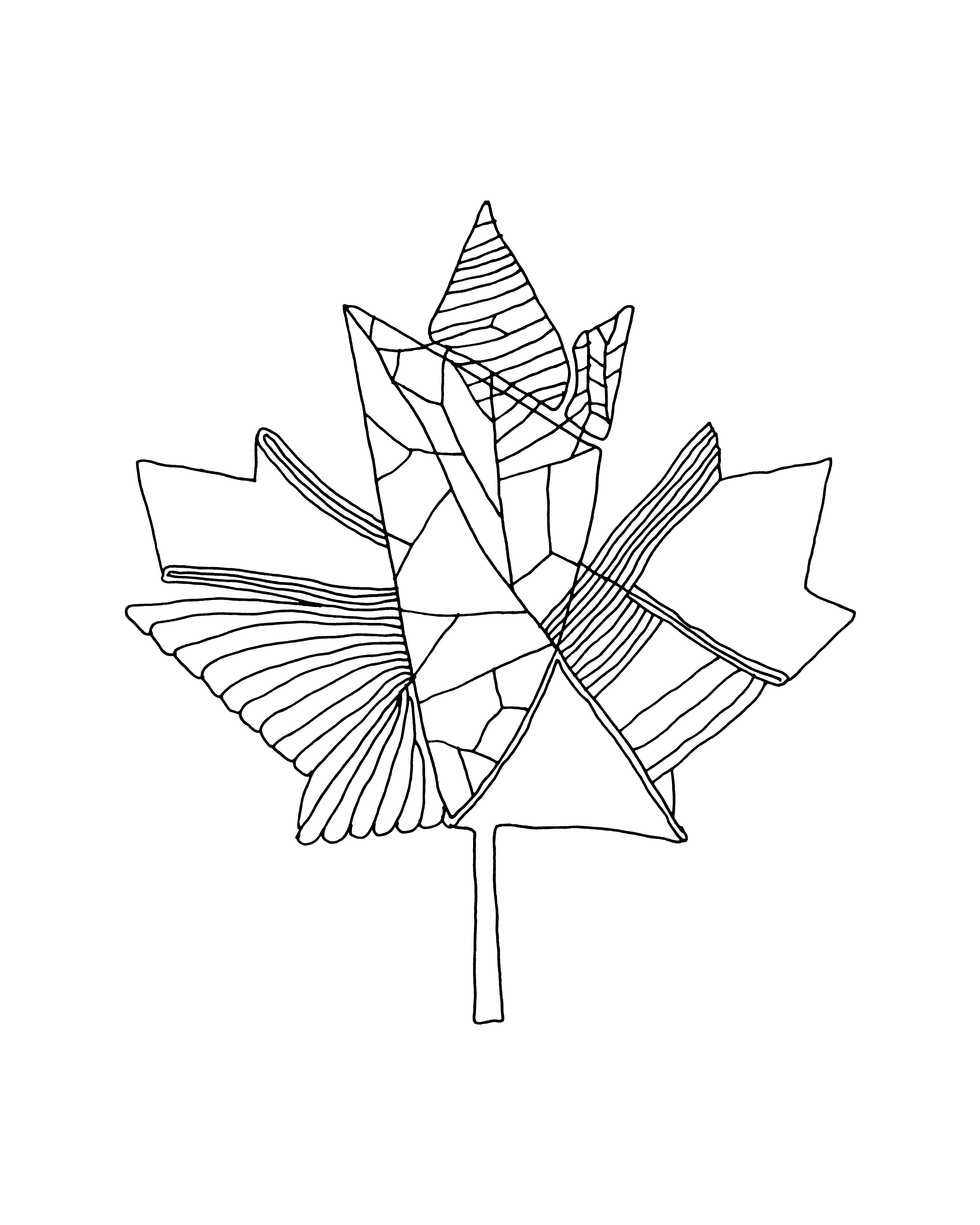 4800x6000 10,000 Pages Canadian Maple Leaf Colouring Page 5883